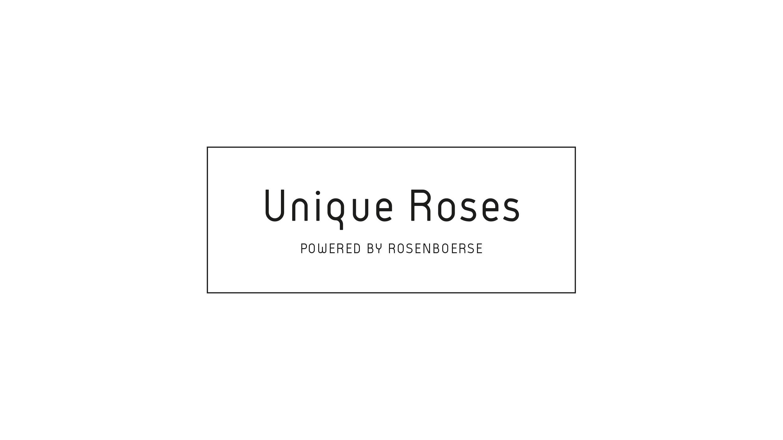 Rosenbörse3